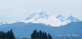 """Photo 3: 3388 ROSS Road in Abbotsford: Aberdeen Land for sale in """"ROSS (NORTH) & FRASER HWY"""" : MLS®# R2033101"""