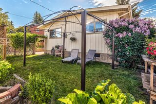 Photo 49: 459 Queen Charlotte Road SE in Calgary: Queensland Detached for sale : MLS®# A1122590