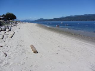 Photo 13: 226 HAIRY ELBOW Road in Sechelt: Sechelt District House for sale (Sunshine Coast)  : MLS®# R2137692