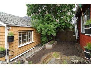 Photo 18: 1711 Haultain St in VICTORIA: Vi Jubilee House for sale (Victoria)  : MLS®# 539317