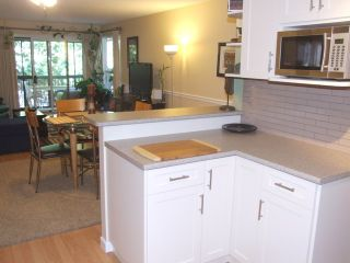 Photo 10: 204 1480 Vidal Street in The Wellington: Home for sale
