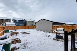 Photo 38: 1610 Legacy Circle SE in Calgary: Legacy Detached for sale : MLS®# A1072527