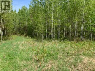 Photo 2: 740 Township Road in Kinuso: Vacant Land for sale : MLS®# A1091736