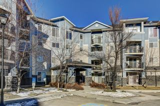 Photo 1: 303 108 COUNTRY VILLAGE Circle NE in Calgary: Country Hills Village Apartment for sale : MLS®# A1063002