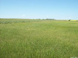 Photo 6: Eagle Creek Acreage 80 Acres in Asquith: Lot/Land for sale : MLS®# SK863384