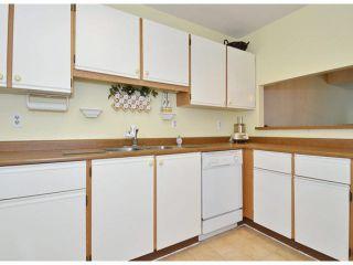 "Photo 8: 213 15275 19 Avenue in Surrey: King George Corridor Condo for sale in ""Village Terrace"" (South Surrey White Rock)  : MLS®# F1425373"