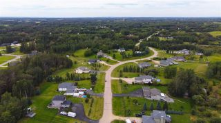 Photo 41: 70 Willowview Boulevard: Rural Parkland County House for sale : MLS®# E4226624