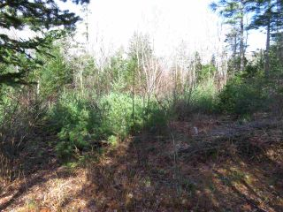 Photo 3: Glasgow Street in Shelburne: 407-Shelburne County Vacant Land for sale (South Shore)  : MLS®# 202100005