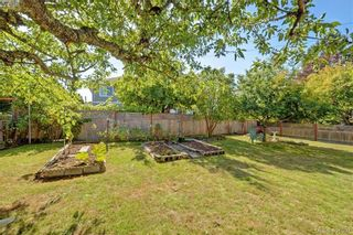Photo 18: 1615 Sheridan Ave in VICTORIA: SE Mt Tolmie House for sale (Saanich East)  : MLS®# 802020
