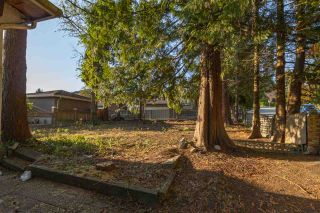 """Photo 13: 5181 GEORGIA Street in Burnaby: Capitol Hill BN House for sale in """"CAPITAL HILL"""" (Burnaby North)  : MLS®# R2489941"""