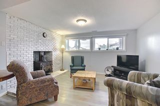 Photo 34: 155 Templevale Road NE in Calgary: Temple Detached for sale : MLS®# A1119165