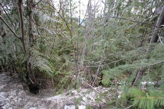 Photo 11: Lot 28 Vickers Trail in Anglemont: North Shuswap Land Only for sale (Shuswap)  : MLS®# 10093853