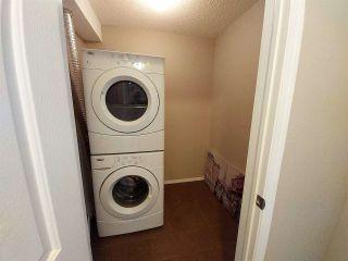 Photo 10: 303 11804 22 Avenue in Edmonton: Zone 55 Condo for sale : MLS®# E4239546
