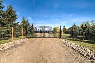 Photo 3: 54006 RR262: Rural Sturgeon County House for sale : MLS®# E4264504