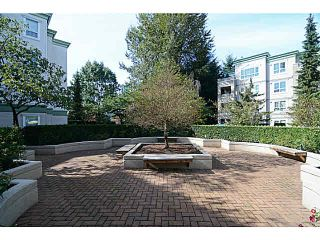 Photo 19: 305 2990 PRINCESS CRESCENT in Coquitlam: Canyon Springs Condo for sale : MLS®# V1142606