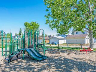 Photo 24: 45 Aberdare Road NE in Calgary: Abbeydale Detached for sale : MLS®# A1110096