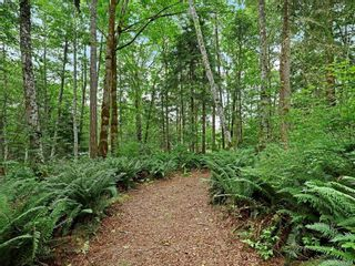 Photo 41: Lot 2 Eagles Dr in : CV Courtenay North Land for sale (Comox Valley)  : MLS®# 869395