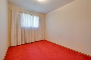 Photo 29: 7228 131A Avenue in Edmonton: Zone 02 House for sale : MLS®# E4252234