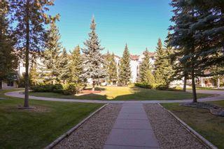 Photo 34: 241 10636 120 Street in Edmonton: Zone 08 Condo for sale : MLS®# E4265580
