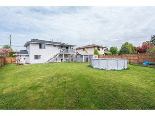 Photo 18: 11722 203RD STREET in Maple Ridge: Southwest Maple Ridge House for sale : MLS®# R2165416