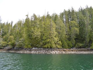 Photo 11: SL 37 Hot Springs Oceanside in : PA Tofino Land for sale (Port Alberni)  : MLS®# 857515
