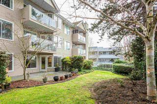 "Photo 20: 105 1369 GEORGE Street: White Rock Condo for sale in ""CAMEO TERRACE"" (South Surrey White Rock)  : MLS®# R2435625"