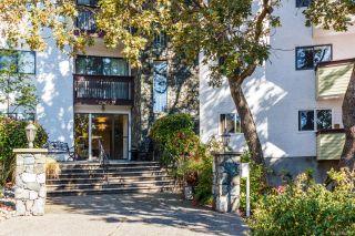 Photo 3: 319 3962 Cedar Hill Rd in : SE Mt Doug Condo for sale (Saanich East)  : MLS®# 865962