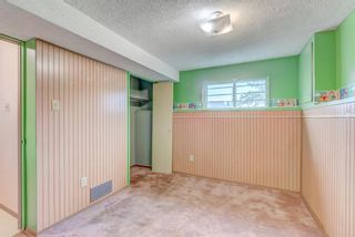Photo 19: 32 Falton Mews NE in Calgary: Falconridge Detached for sale : MLS®# A1144619