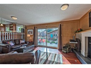 Photo 14: 551 PARKRIDGE Drive SE in Calgary: Parkland House for sale : MLS®# C4045891