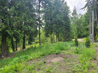 Photo 7: 1395 Taylor Road, in Sorrento: Vacant Land for sale : MLS®# 10229703