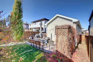 Photo 44: 2500 Sagewood Crescent SW: Airdrie Detached for sale : MLS®# A1152142