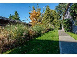 """Photo 18: 1214 34909 OLD YALE Road in Abbotsford: Abbotsford East Townhouse for sale in """"The Gardens"""" : MLS®# R2115927"""