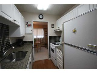 """Photo 4: 304 1048 KING ALBERT Avenue in Coquitlam: Central Coquitlam Condo for sale in """"BLUE MOUNTAIN MANOR"""" : MLS®# V914288"""