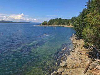 Photo 18: 21455 PORLIER PASS Road: Galiano Island House for sale (Islands-Van. & Gulf)  : MLS®# R2391023