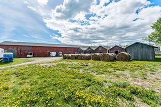 Photo 37: 386091 112 Street: Rural Foothills County Detached for sale : MLS®# C4301628