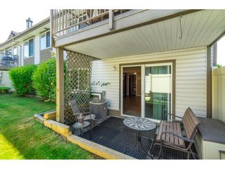 """Photo 27: 41 20222 96 Avenue in Langley: Walnut Grove Townhouse for sale in """"Windsor Gardens"""" : MLS®# R2597254"""