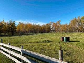 Photo 42: 450080 HWY 795: Rural Wetaskiwin County House for sale : MLS®# E4264794