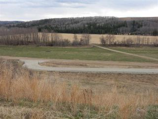 Photo 8: TWP ROAD 492 RANGE ROAD 234: Rural Leduc County Rural Land/Vacant Lot for sale : MLS®# E4218784