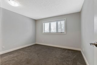 Photo 16: 28 Mckerrell Crescent SE in Calgary: McKenzie Lake Detached for sale : MLS®# A1049052