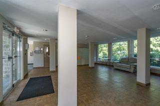 """Photo 14: 322 13277 108 Avenue in Surrey: Whalley Condo for sale in """"PACIFICA"""" (North Surrey)  : MLS®# R2172673"""