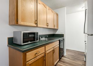 Photo 7: 338 1421 7 Avenue NW in Calgary: Hillhurst Apartment for sale : MLS®# A1095896