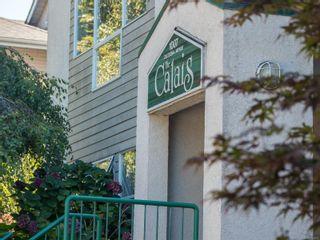 Photo 5: 102 1007 Caledonia Ave in : Vi Central Park Condo for sale (Victoria)  : MLS®# 885671