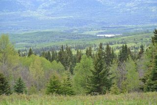 """Photo 6: DECEPTION LAKE FOREST SERVICE ROAD: Telkwa Land for sale in """"WOODMERE"""" (Smithers And Area (Zone 54))  : MLS®# R2398092"""