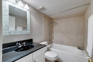 Photo 24: 197 Chaparral Circle SE in Calgary: Chaparral Detached for sale : MLS®# A1142891