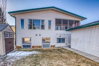 Photo 48: 543 Lake Newell Crescent SE in Calgary: Lake Bonavista Detached for sale : MLS®# A1081450