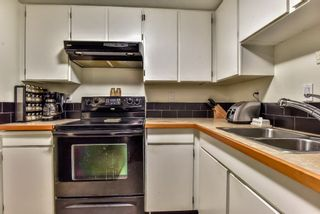 """Photo 14: 105 225 MOWAT Street in New Westminster: Uptown NW Condo for sale in """"THE WINDSOR"""" : MLS®# R2295309"""