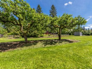 Photo 56: 7511 Howard Rd in MERVILLE: CV Merville Black Creek House for sale (Comox Valley)  : MLS®# 839801