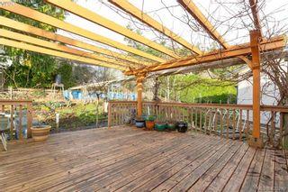 Photo 30: 4374 Elnido Cres in VICTORIA: SE Mt Doug House for sale (Saanich East)  : MLS®# 831755