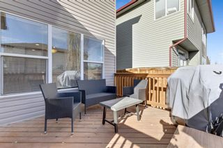 Photo 30: 389 Evanston View NW in Calgary: Evanston Detached for sale : MLS®# A1043171