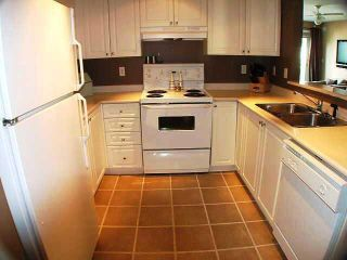 Photo 4: 302 3085 primrose in LAKESIDE TERRACE: Home for sale